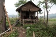 Camping with two new friends in an abandoned shack in a rice paddy field